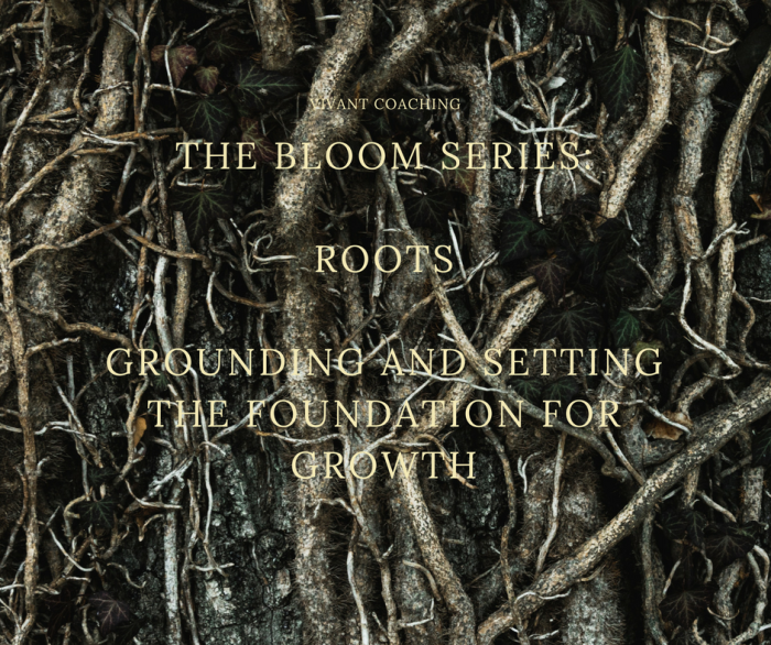 RootsGrounding and setting the foundation forgrowth